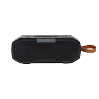 IPX4 Waterproof Bluetooth Speaker ESB8216B