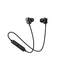 Dual driver BT  Earphone EEB8875B