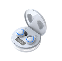 TWS BT earphone EEB8901B